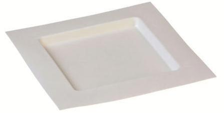 Zuckerrohr Teller Dedra quadratisch 22,4 x 22,4 cm