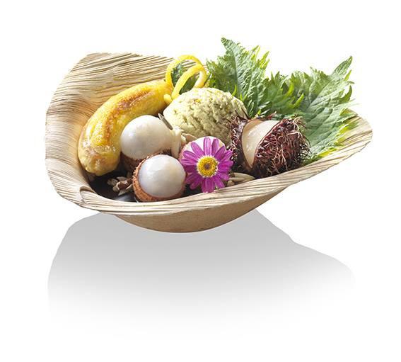 Palmblatt Trigon Bowle 300ml 18 x 17 x 5,5 cm